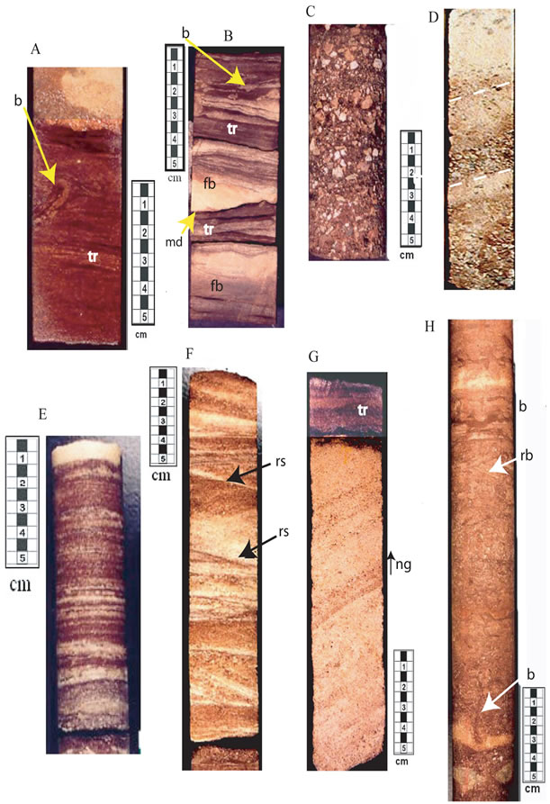Subsurface Facies Analysis Of The Late Cambrian Mt Simon