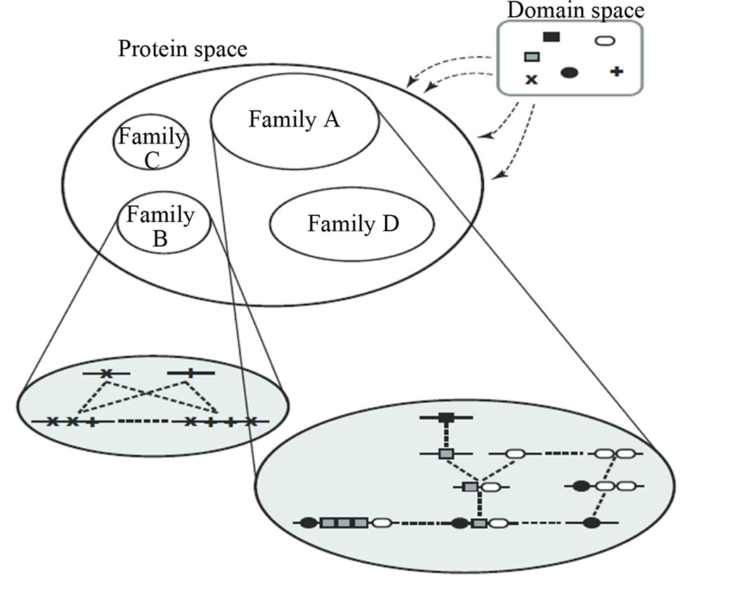bioinformatic game theory and its application to biological affinity networks