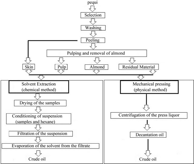 Study Of The Process Of Extraction And Refining Of Pequi I Caryocar Brasiliense I Camb Oil