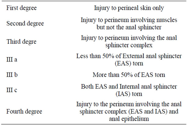 Professional's skills in assessment of perineal tears after