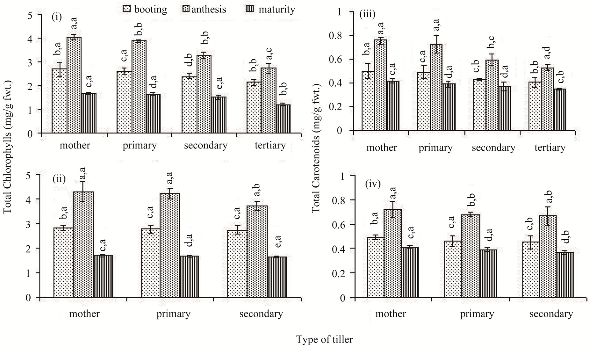 Variation in Senescence Pattern of Different Classes of Rice ...