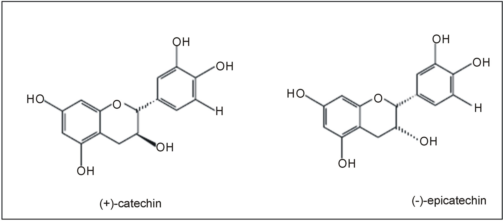 Catechin And Epicatechin Contents In Wines Obtained From