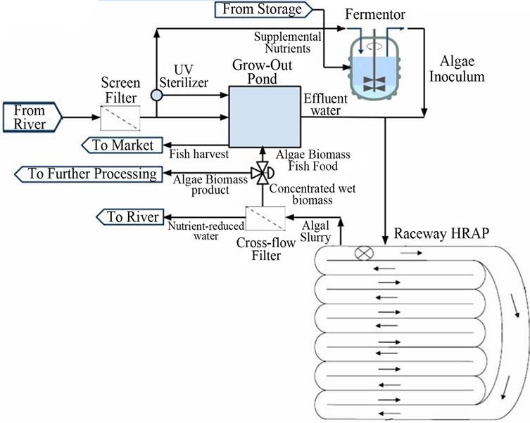 Sustainable Management of Algae in Eutrophic Ecosystems