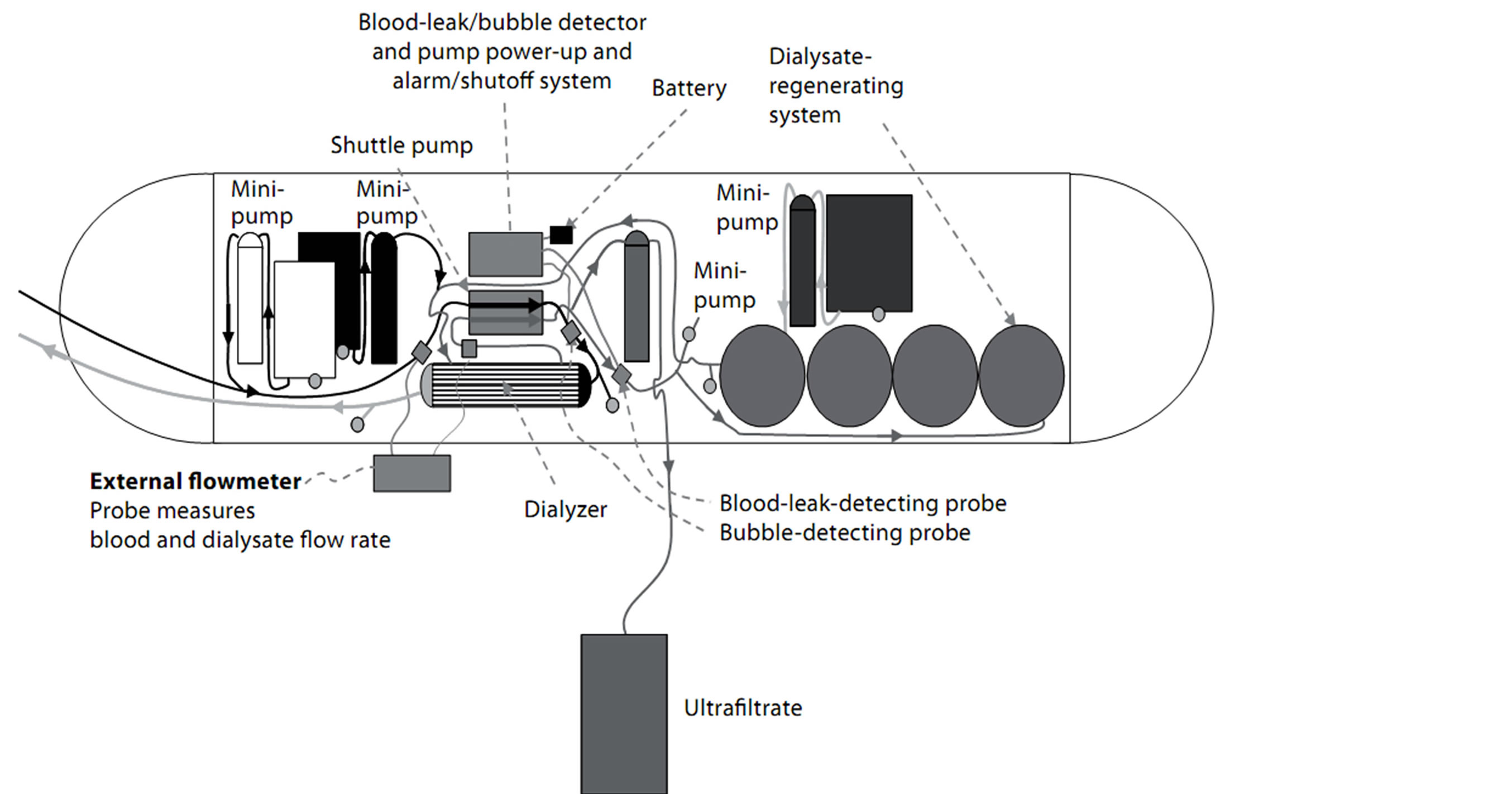 Current status of bioartificial kidney ccuart Image collections