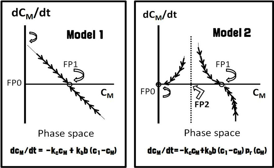 Use of a mathematical model of autopoietic maintenance of pulmonary ...