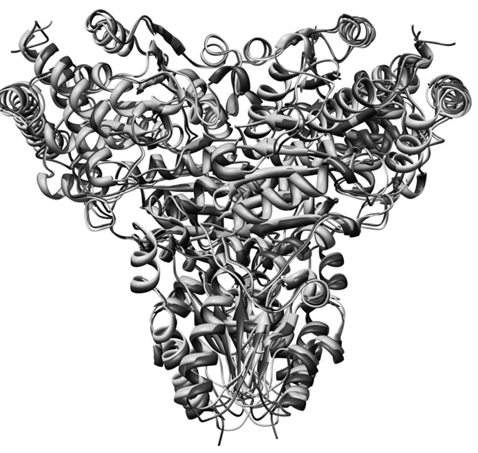 Identification Of Potential P. Falciparum Transketolase