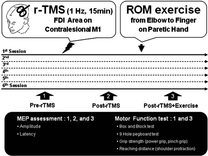 The Effect of Low Frequency Repetitive Transcranial Magnetic