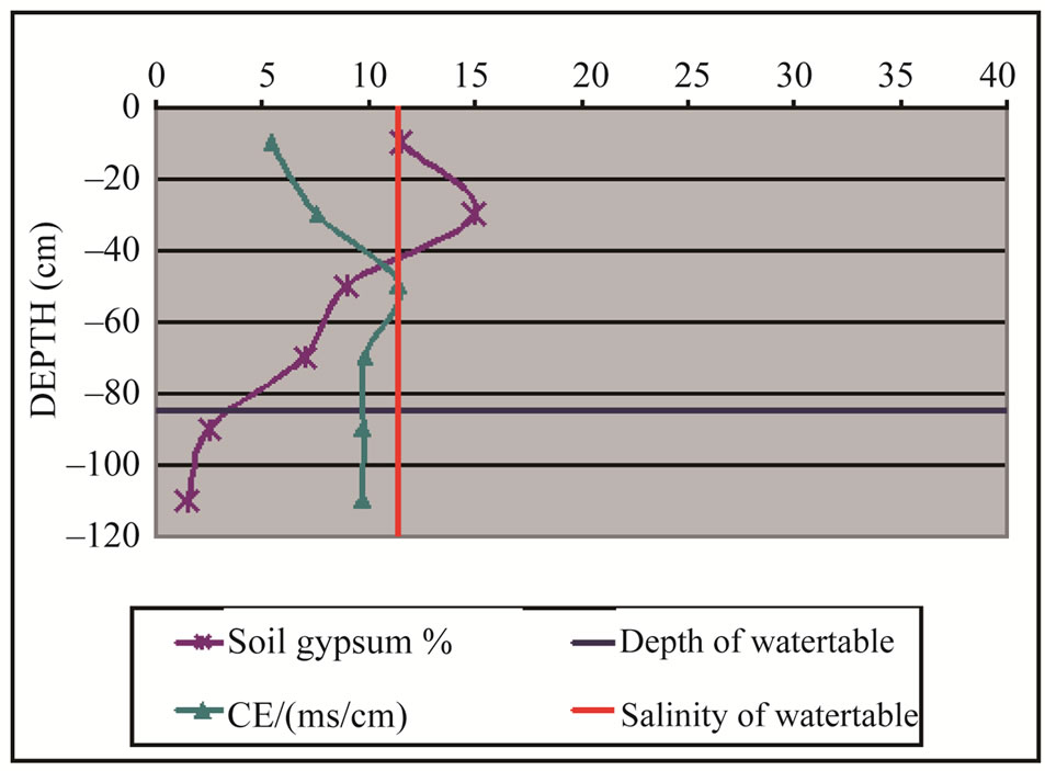an analysis of the effects of soil salinity Although everyone knows that seawater is salty, few know that even small variations in ocean surface salinity (ie, concentration of dissolved salts) can have dramatic effects on the water cycle and ocean circulation.