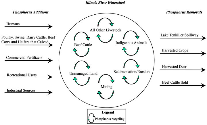 phosphorus mass balance of the illinois river watershed in