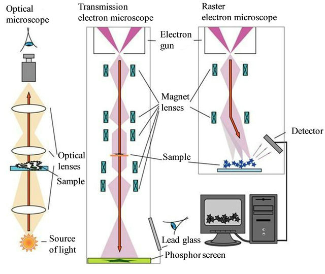 the description of the electron microscope and how it works