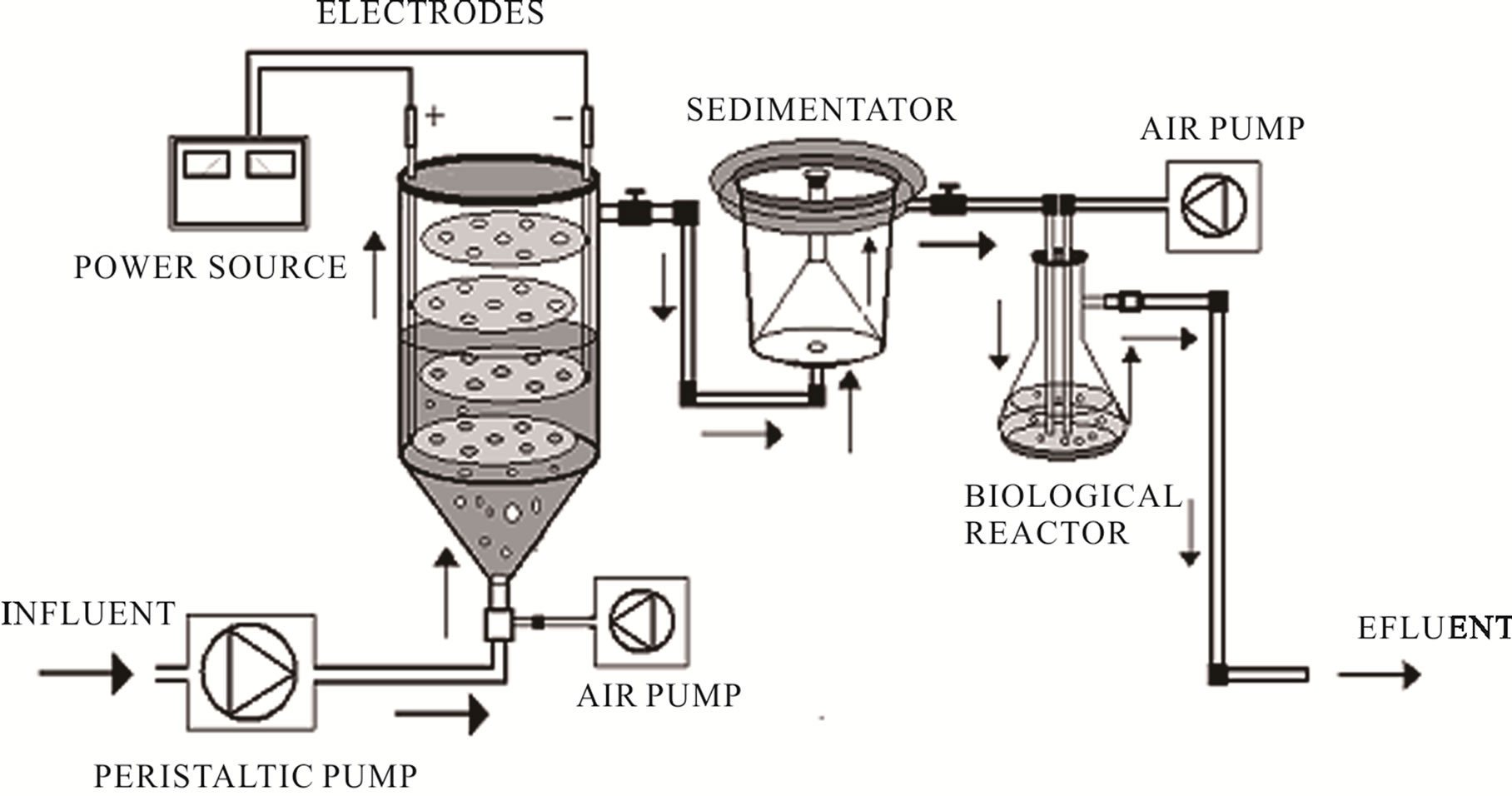 effect of chytriomyces hyalinus on industrial wastewater