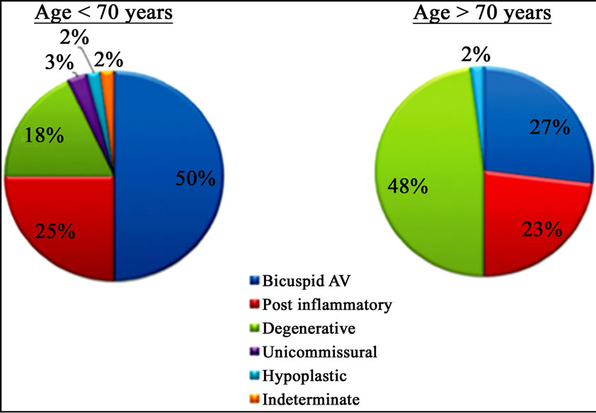 Aortic Stenosis In The Elderly Understanding The New Therapeutic