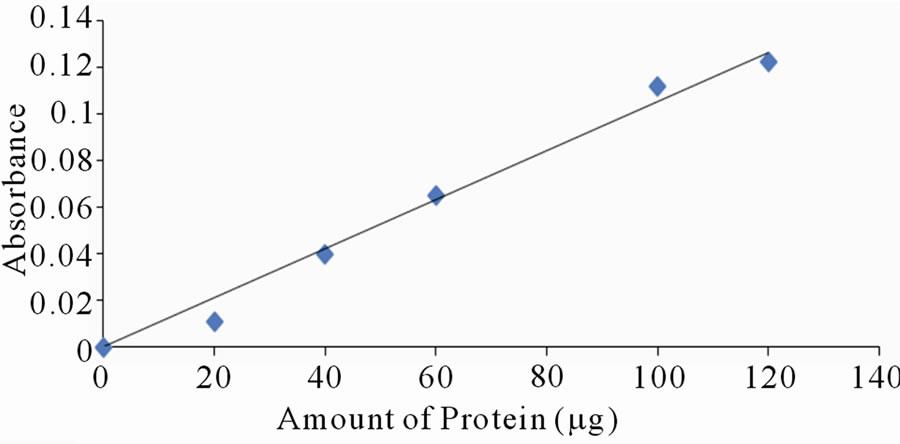 bradford test for protein estimation