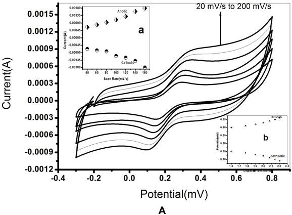development of impedimetric biosensor for total