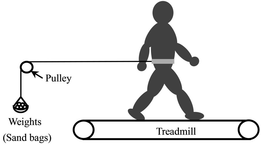 oxygen uptake  heart rate  and work rate at ventilatory threshold for treadmill walking against