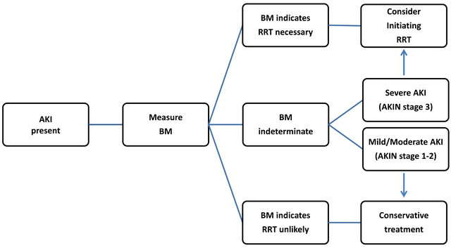 Biomarkers in acute kidney injury biomarker based strategy for renal replacement therapy in aki patients aki acute kidney injury bm biomarker rrt renal replacement therapy ccuart Choice Image