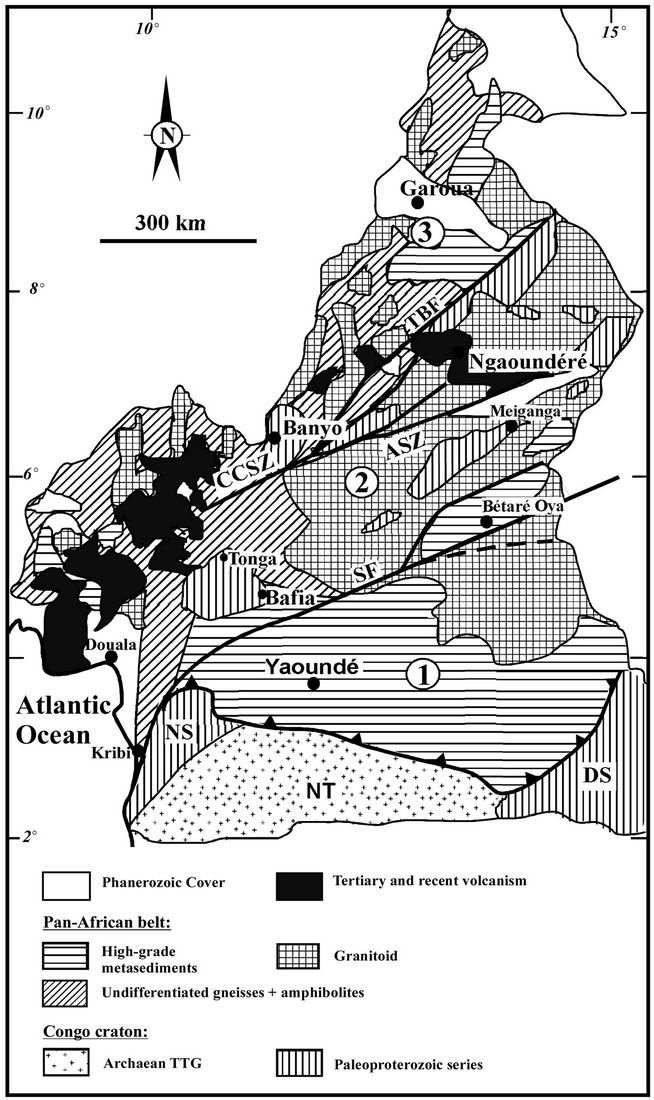 Geochemistry and geochronology of peraluminous high k granitic geochemistry and geochronology of peraluminous high k granitic leucosomes of yaound series cameroon evidence for a unique pan african magmatism and ccuart Choice Image