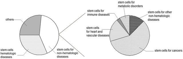 Leukaemia and Stem Cells?