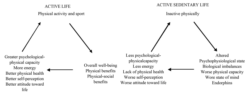 """The Normalization of the """"Active-Sedentary"""" Lifestyle in"""