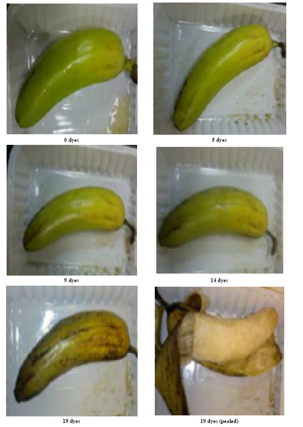 Edible Coating For Shelf Life Extension Of Fresh Banana