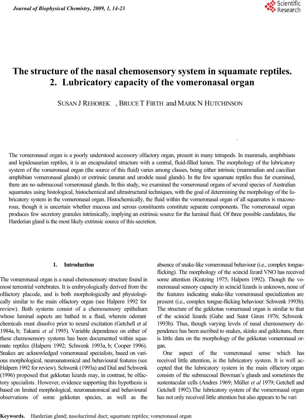sixth sense the vomeronasal organ essay