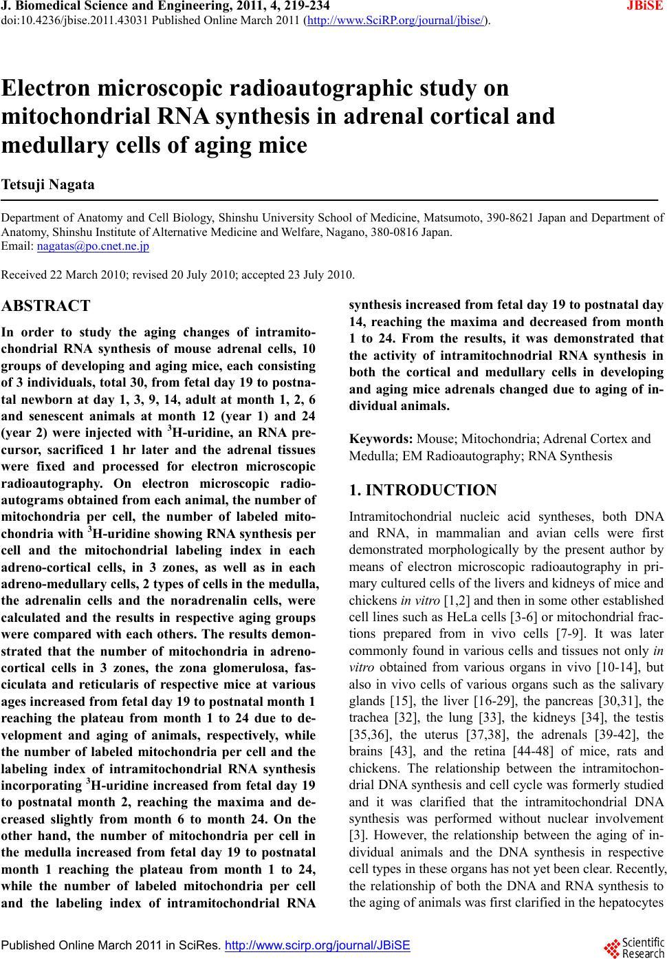 Electron microscopic radioautographic study on mitochondrial RNA ...
