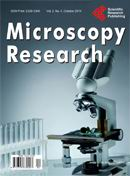 Microscopy Research