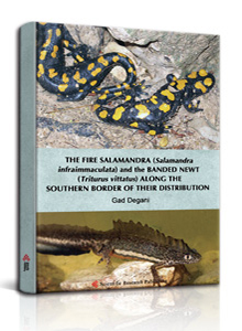 THE FIRE SALAMANDRA (Salamandra infraimmaculata) and the BANDED NEWT (Triturus vittatus) 